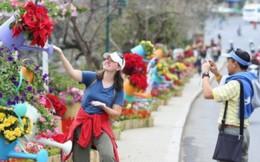 Đà Lạt rực rỡ sắc màu Festival Hoa 2017