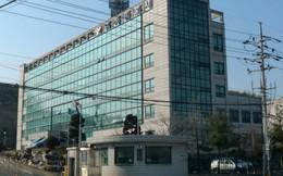 Danh tính người chồng Hàn Quốc bị cáo buộc sát hại vợ Việt
