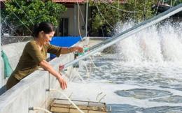 TYM đã hỗ trợ hơn 120.000 phụ nữ thoát nghèo bền vững