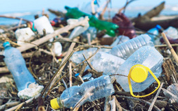 Tập trung thực hiện các giải pháp ngăn chặn, đẩy lùi rác thải nhựa