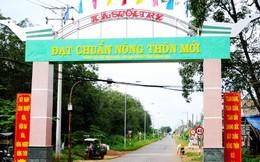2 tỉnh đầu tiên hoàn thành nhiệm vụ xây dựng nông thôn mới