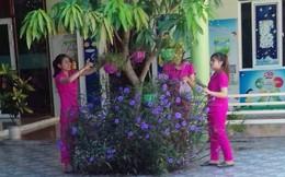 Năm học mới không có học trò của những 'cô giáo quỳ xin dạy học' ở Nghệ An