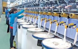 Hiệp định CPTPP: Sức cạnh tranh hàng hóa Việt Nam thấp nhất trong khối