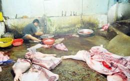 Vấn nạn thực phẩm bẩn chưa có dấu hiệu thuyên giảm