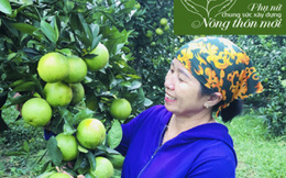 Hà Tĩnh: Lễ hội tôn vinh nông sản và thành tựu xây dựng nông thôn mới