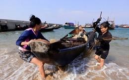 Các ngân hàng tung gói hỗ trợ ngư dân miền Trung