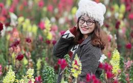 Quà tặng 8/3 đây chứ đâu: Một trời hoa nở rực rỡ ở Fansipan