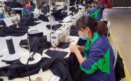 Hơn 23.700 doanh nghiệp phá sản, có chủ nước ngoài bỏ trốn còn nợ BHXH