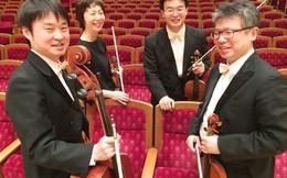 Tứ tấu đàn dây Nhật Bản sẽ trình diễn 'Diễm xưa' tại Hội An