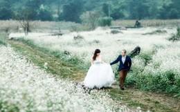 Bộ ảnh cưới tuyệt đẹp trên cao nguyên Mộc Châu