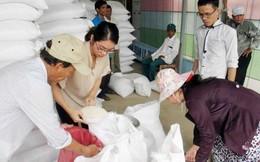 Xuất cấp 480 tấn gạo hỗ trợ tỉnh Quảng Trị
