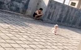 Bố bỉm sữa vô tư cho con phơi nắng trên sân thượng