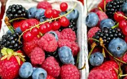 Giảm mỡ bụng trong thời gian ngắn nhất nhờ ăn những thực phẩm này