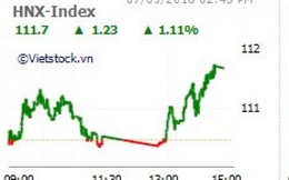 Cổ phiếu của Vinamilk và ngân hàng dẫn sóng, VN-Index tăng gần 11 điểm