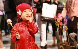 Cả nước rộn ràng chào đón năm mới Đinh Dậu