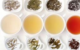 5 loại trà tốt cho sức khỏe giúp thon dáng, đẹp da ngày lạnh