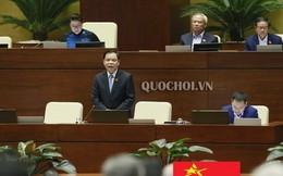 Giải pháp căn cơ cho nông sản Việt Nam
