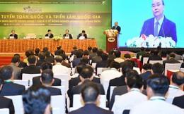 Phải chuyển từ tư duy nông nghiệp đơn thuần sang tư duy kinh tế nông nghiệp hội nhập sâu rộng