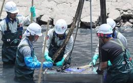 Các nhà khoa học nói gì về hiệu quả lọc nước sông Tô Lịch công nghệ Nano?