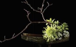 Bông hoa trên bánh khiến người xem thích mê của nghệ nhân Hùng Quách