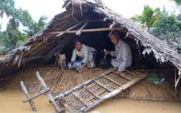 29 người chết và mất tích do mưa lũ miền Trung
