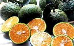 Tác dụng tuyệt vời của quả cam