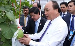 Thủ tướng: Xây dựng nông thôn mới đạt kết quả tích cực