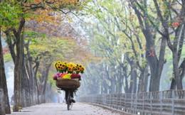 Hà Nội vào top 10 thành phố tăng trưởng du lịch nhanh nhất thế giới