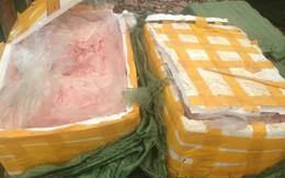 Tiêu hủy 600kg nầm dê, lợn hôi thối trên đường tiêu thụ