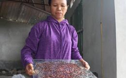 Bệnh tật bủa vây người dân quanh bãi rác Nam Sơn