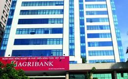 Agribank xếp hạng 156/500 ngân hàng lớn nhất Châu Á về quy mô tài sản