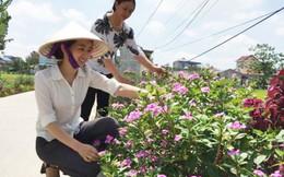 Các cấp Hội LHPN tỉnh Nam Định thành công với 1.500 km 'Tuyến đường hoa'