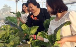 Hơn 200 sản phẩm sạch được giới thiệu tại Ngày hội 'Phụ nữ khởi nghiệp'