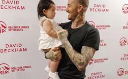 David Beckham khen con gái Hà Anh đáng yêu