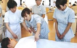Nhiều cơ hội cho nữ điều dưỡng làm việc tại Đức