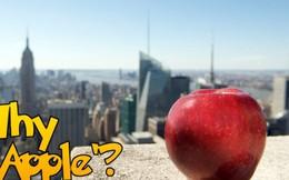 Vì sao New York có biệt danh 'Quả táo lớn'?