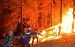 1 phụ nữ ở Nghệ An tử vong khi tham gia chữa cháy rừng