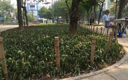 Hà Nội gỡ 'hàng chông' tua tủa gần Nhà hát Lớn