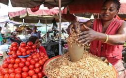 Các bà nội trợ Nigeria chật vật trong cuộc 'khủng hoảng cà chua'