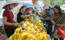 Người Hà Nội 'đội nắng' đến Hội chợ thực phẩm sạch