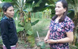 Người cán bộ Hội cơ sở giúp nhiều phụ nữ thoát nghèo