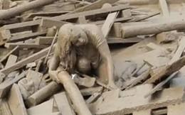 Thót tim cảnh người phụ nữ thoát chết chìm trong bùn