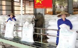 Tiến tới thị trường cạnh tranh lành mạnh, công bằng cho mặt hàng đường trong nước sản xuất