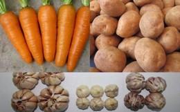 Tinh mắt phân biệt rau củ quả Trung Quốc