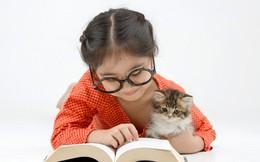 Con gái nằng nặc đòi mẹ cho nuôi mèo