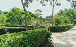 Lan tỏa mô hình 'nhà sạch - vườn mẫu' tại Thanh Hóa