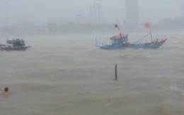 5.000 tàu, thuyền trên biển đang tìm nơi tránh bão số 7