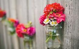Bị chàng cưa đổ bằng những khóm hoa