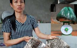 Gần 20 năm sống khổ của người dân quanh bãi rác Nam Sơn