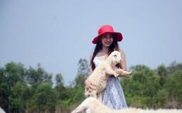 Thiếu nữ thích thú trải nghiệm đồng cừu Suối Nghệ chỉ với 50.000 đồng